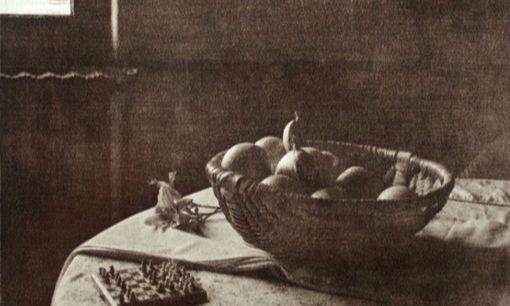 Fruit Bowl in Chantilly